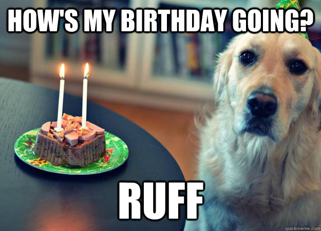 birthdaybinge